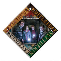 Harry Potter House Banners Hanging Glass Print