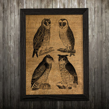 Owl poster Burlap print Bird print Animal decor BLP102
