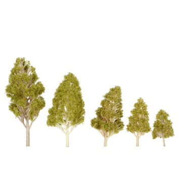 Plastic Trees Model 5Pcs Architectural Model Railroad Layout Garden Landscape Scenery Diorama Miniatures Trees Model SM6