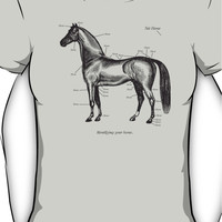 Identifying your horse Women's T-Shirt