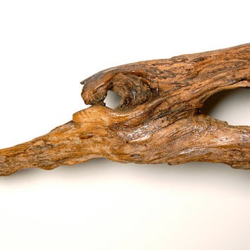 Decorative Driftwood, Wall Art, Brown Salvaged Wood, Interior Decorating, Reptile Display