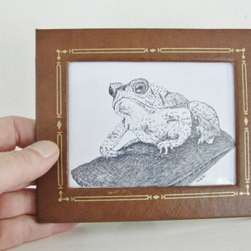 Nature Art Print Frog Toad Art Vintage by maryrichmonddesign