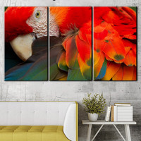 A parrot canvas, Canvas, Wall decor, Home decor, Home decor store, A parrot print, Typography canvas, Animals Multi Panel, Typography canvas