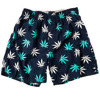 The Plantlife Boxers in Navy