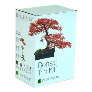 Bonsai Three Tree Growing Kit