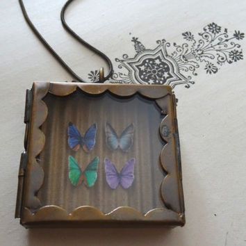 1- Butterfly Specimen Necklace 4 Butterflies Under Glass Insect Shadow Box OOAK Unique Miniature Locket PeculiarCollective Necklace Inv0126
