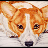 Fiona Corgi Indoor or Outdoor Mat 18x27 AMB1133MAT
