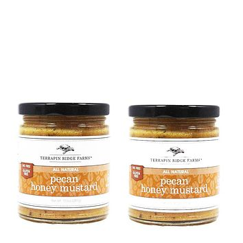 2 Pack Terrapin Ridge Farms - Pecan Honey Mustard, 10.5 oz