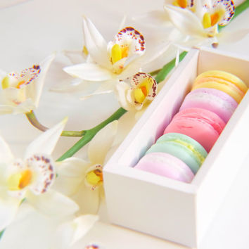 French Macaron Soaps in Box - Wedding Party Favors Gifts For Mom  Gifts for Aunt Gifts for Sister Gifts for Grandma - Gift for Pastry Chef