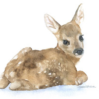 Deer Fawn Lying Down Watercolor