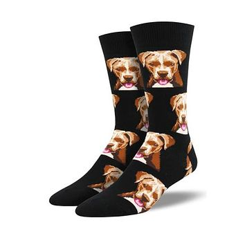 Novelty Socks PIT BULL BLACK Fabric Cotton Crew Dog Mnc1547 Blk