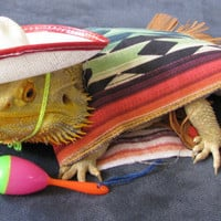 Bearded Dragon Mexican Fiesta Costume