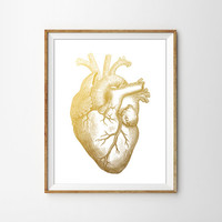 Anatomical Faux Gold Heart Print. Medical Art. Minimalist Decor. Office Art. Heart Anatomy. Human Heart. Scientific print.
