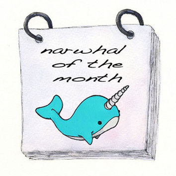 Narwhal of the Month Club  3 month subscription  by OstrichFarm