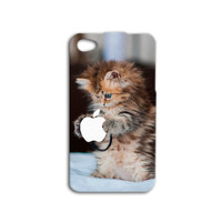Kitten Holding Apple Logo Cute Adorable One of a Kind Kitty Custom Cat Case Cover iPhone 4 iPhone 4s iPhone 5 iPhone 5s Apple Case