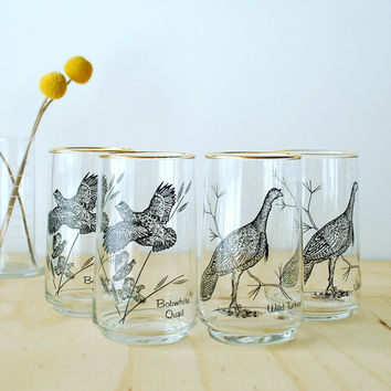 Vintage Bird Highball Glasses - Quail Wild Turkey
