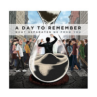 A Day To Remember - What Separates Me From You Vinyl LP | Hot Topic