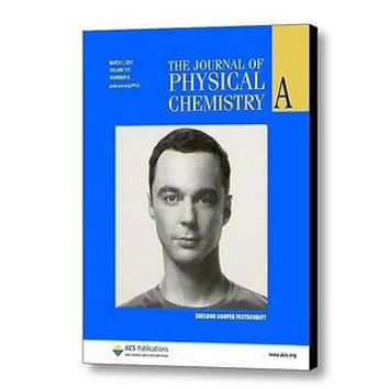 The Big Bang Theory Sheldon Cooper Journal of Physical Chemistry Framed prop