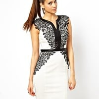 Paper Dolls Pencil Dress with Lace and PU Trim