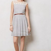 Stripewave Dress by Bordeaux Blue Motif Xs P Dresses