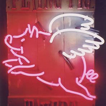 Flying Pigs Neon Sign