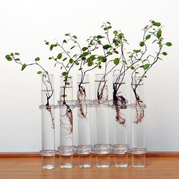 Clear 6 Tubes Shape Flower Glass Vase Bottle For Flower Plant DIY Home Decoration Terrarium Hydroponic Container