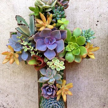 Succulent Living CROSS Hang or Stand Centerpiece SUCCULENT PLANTER Outdoor Decor Perfect Unique Gift and Home Decor
