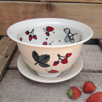 Berry Strainer with Plate Strawberry field  patern