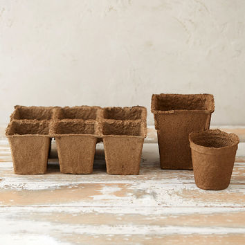 Square Seed Starting Pots, Set of 20