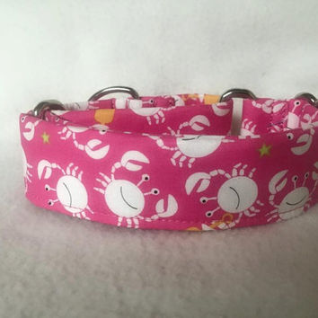 "Sea Buddies Little Diggers Raspberry Martingale or Quick Release Collar 1"" Martingale 1.5"" Martingale or 2"" Martingale Crabs"