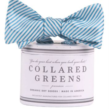 CG Stripes Bow in Teal Blue by Collared Greens