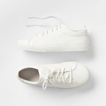 Gap Boys Solid Sneakers