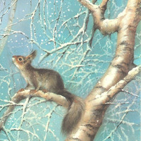 Vintage post card -Squirrel- Happy New Year - Soviet postcard - Russian card- greeting card - congratulation card-Invitation- not used