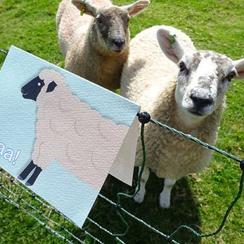 Sheep card, this wonderful hand-illustrated farm animal notecard is full of expression, blank inside for your own message