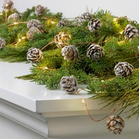 Philips 30ct Christmas Battery Operated LED Frosted Pinecones Garland Dewdrop Fairy String Lights - Warm White