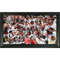 2013 Stanley Cup Champions Signature Rink