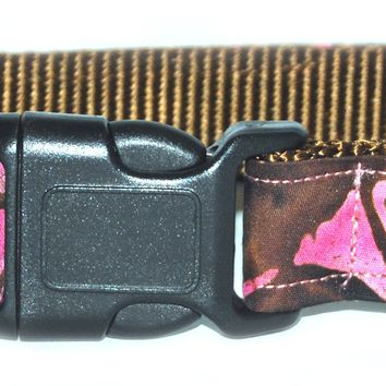 Raspberry Truffle Dog Collar