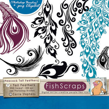 Peacock Tail Feathers - Photoshop Brushes & PNG Graphics for Card Design - Wedding Invitation Clip Art - Commercial Use - Designer Resource