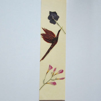 """Handmade unique bookmark """"Spread beauty"""" - Decorated with dried pressed flowers and herbs - Original art collage."""
