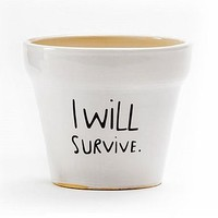 'I Will Survive' Plant Pot