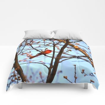 Red Robin Comforters by UMe Images