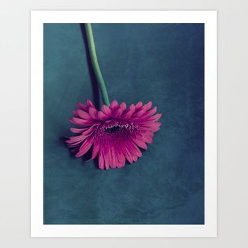 Gerbera for love Art Print by vanessagf