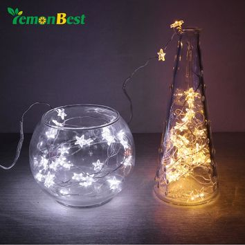 LemonBest 2M 3M Copper Wire String Light with Bottle Stopper for Glass Craft Bottle Fairy Valentines Wedding Decoration string