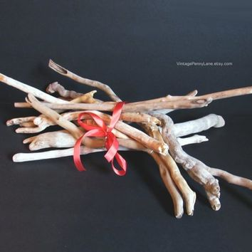 Bundle of 12 Pcs Smooth Drift Wood Branches, 15 to 18 Inches, Craft Supplies, Natural Decor, Bulk Lot