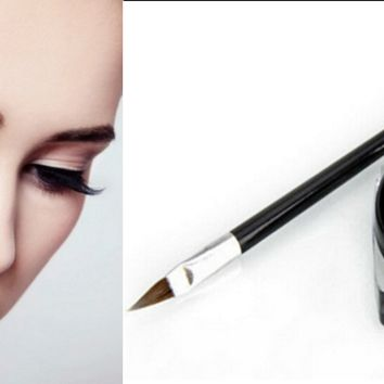 Professional Waterproof Black Eye Liner Eyeliner Gel Makeup Cosmetic Brush Set