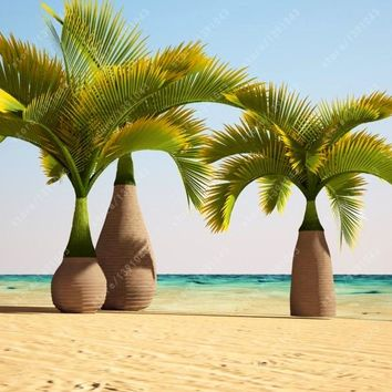 10 pcs/bag Bottle palm tree seeds,Exotic Plants Tree Bonsai Pots Planters Tropical Ornamental Balcony for Home & Garden