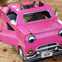 Cat Cadillac Play House