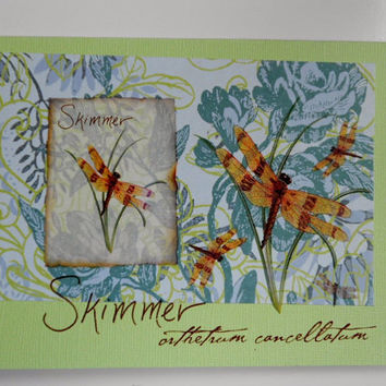 Skimmer Forest Summer Blank Expressions Handmade Greeting Card