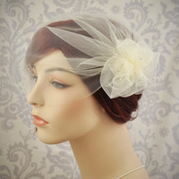 Wedding Veil  Tulle Birdcage Veil with Pouf by januaryrosebridal