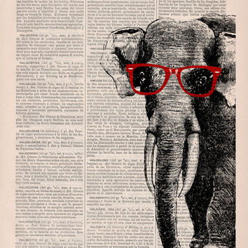 Vintage book print Geek Elephant (with glasses) Print on Vintage Book page- Nursery wall art BPAN096b